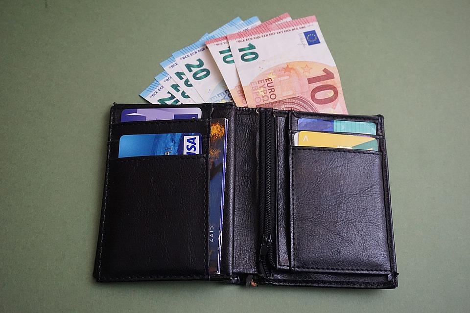 evropská peněženka