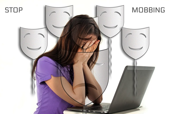 šikana na internetu